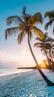 testimonio viaje al caribe