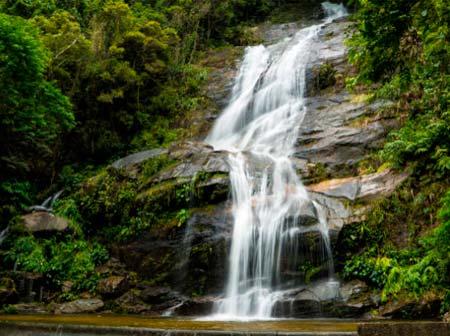 Guia naturaleza Rio de janeiro